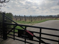 Sussex April 2019: Two days in Sussex for walking and vineyard visits.